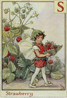 "Vintage Flower Fairy Print Cicely Mary Barker Alphabet ""Strawberry Letter S"" C. 1934"