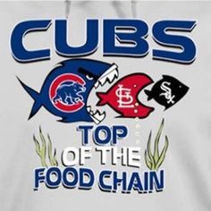 Fins to the left Fins to the right CUBS eating good alright Chicago Cubs Pictures, Chicago Cubs Fans, Chicago Cubs Baseball, Cubs Gear, Cubs Games, Cubs Win, Go Cubs Go, Chicago Style, Bear Cubs