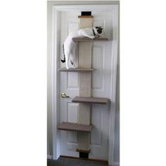 Znalezione obrazy dla zapytania how to make your own mojo maker cat toy