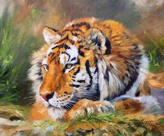 Tiger Wildlife Art Painting by David Stribbling, UK Artist