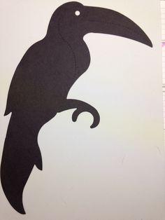 Toucan - XL