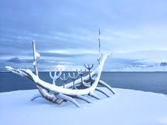 Reykjavík, Iceland in record snowfall- pic of the Sun Voyager. Beautiful winter wonderland. We even saw the northern lights in the evening- would've been the perfect time to go to the Blue Lagoon, or hot spring!