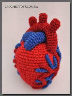 Crochet heart. To go with the crocheted uterus I made last year.