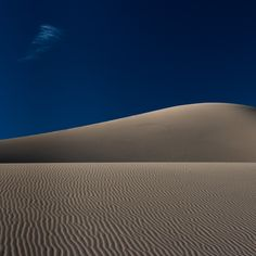 Photograph Minimal Mesquite by Dayne Reast on 500px