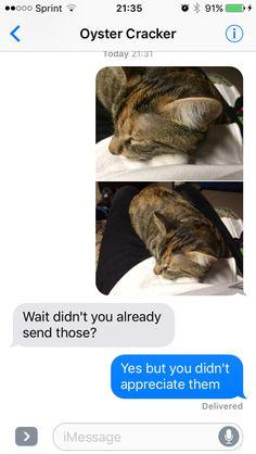 Love My Cat You Potato