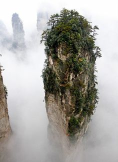 Wulingyuan Avatar Forest: A must-see destination for any traveler to China. Easily one of the most magical places we have visited on earth! Wonderful Places, Beautiful Places, Beautiful Pictures, Tianzi Mountains, Oh The Places You'll Go, Places To Visit, Magic Forest, Above The Clouds, Natural Wonders