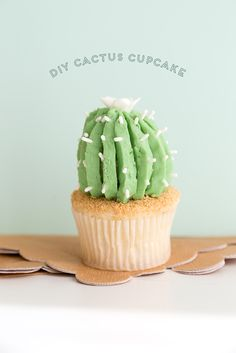We love cactus and we love cupcakes, so we thought we would combine into a perfect treat for your next party! We even have a video tutorial to show you how to make these cute and delicious cactus cupcakes!