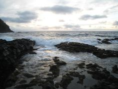 A study of oceans' past raises worries about their future. (Credit: Copyright Michele Hogan)
