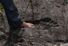 On August 24, 2016 a giant human footprint of 57 cm long, 20 cm wide and 3 cm deep was discovered fossilized in a rock in China's Guizhou.