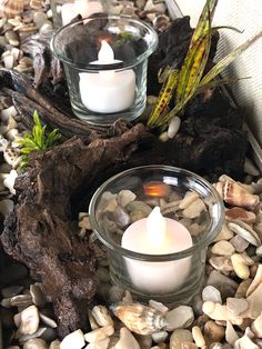 Di's Studio Designs handcrafted decorative candleholders Candle Holder Decor, Votive Holder, Candles And Candleholders, Candle Centerpieces, Coastal Decor, Shopping Mall, Driftwood, Oysters, Decorative Items