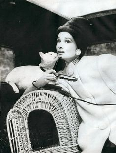 """Audrey Hepburn in Nina Ricci white wool fleece coat, with Simone the cat, photo by Avedon for """"Paris Pursuit"""" 1959"""
