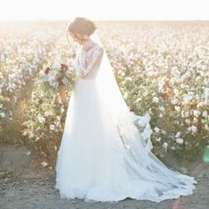My favorite time of year in the Central Valley is when it's cotton season. My favorite kind of bride is the one who gets into dusty, soft dirt and doesn't care if her beautiful wedding dress gets dirty. So basically I love everything about this image.