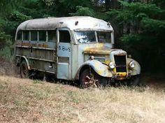 48 White short bus photo 1 Gmc Pickup Trucks, Freightliner Trucks, Old School Bus, School Buses, Abandoned Cars, Abandoned Vehicles, Abandoned Buildings, Classic Trucks, Classic Cars