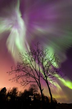 Northern Lights Explosion in Trondheim, Norway ~ by Gunnar Søreng