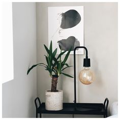 Decor, Wall Lights, Sconces, Wall, Home Decor, Light
