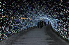 Milyonlarca ışıkla süslenen park