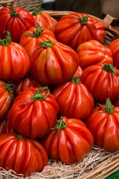 Heirloom Tomatoes at a Paris Market