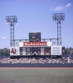 45e18f61d9f4 Anheuser-Busch sign would flap its wings after every  Cardinals HR at Sportsman s  Park