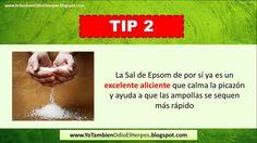 Cura Para El Herpes Genital: Video Revela Los Mejores Remedios Caseros http://herpes.articulos.us/