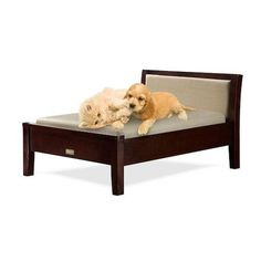 Classic Paws Toby Collection Furniture Style Pet Bed, Dog,Cat