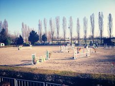Show Jumping Field…