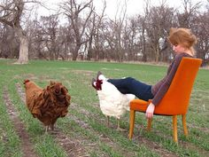 As seen on The City Farm Girl Betty is handcrafted in Lyons, Kansas. Her feathers are hand-felted wool, her egg-shaped structure is turned from a fallen wood log, and her feet and beak have been sculpted and cast in bronze. Each chicken footstool is one-of-a-kind,...