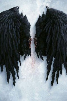 "Lucifer ""The Fallen"" Black Angel Wings, Black Angels, Image Beautiful, Demon Aesthetic, Wings Wallpaper, Wallpaper Desktop, Flash Wallpaper, Angel Wallpaper, Weeping Angels"