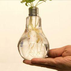 2017 Creative Light Bulb  Clear Glass Beverage Tea Fruit Juice Drink Bottle Cup Plant Flower Vase Table Home Decorations Hot