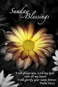 Sunday Blessings Praise The Lord sunday sunday quotes happy sunday sunday blessings religious sunday quotes sunday quote happy sunday quotes sunday blessings quotes sunday quotes with bible verse