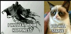 Banshee: I will eat your happiness.  Grumpy Cat: You will starve.
