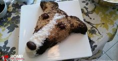 greyhound cake - Google Search