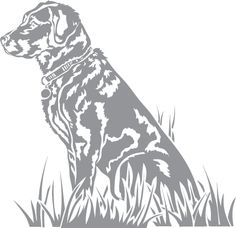 Glass etching stencil of Labrador Retriever. In category: Dogs