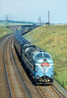 Electric Locomotive, Diesel Locomotive, Steam Locomotive, Fathers Day In Heaven, Uk Rail, Garden Railroad, Rail Transport, Old Trains, British Rail