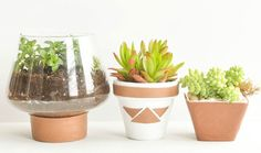 Give Your Planters a Posh Makeover With Leather Scraps