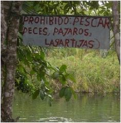 carteles absurdos
