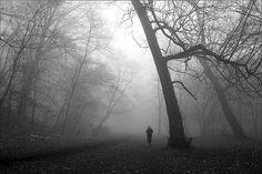 Running in the fog.
