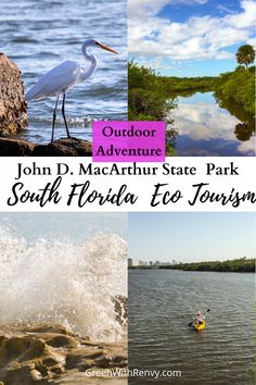 Just north of Palm Beach, John D. MacArthur State Park offers beaches, kayaking, wildlife and plenty of  opportunity for a slice of #ecotourism. #Florida #eastcoast #beaches #USA