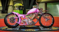 Pink Panther wins 20