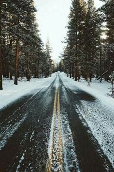 winter. snow. road trip. perfection.