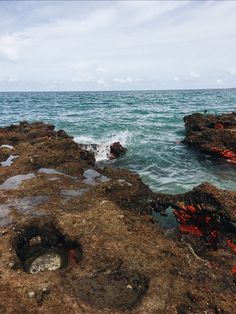 SINGER ISLAND FL | laurennwelchh | VSCO Journal