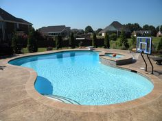 Beach entry gunite pool with dolphin water slide - Swimming pool basketball hoop costco ...