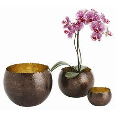 ARTERIORS Alessandria Bowls, Set of 3 Item No: 2476 Set of three hand hammered solid brass bowls with irregular top edge. Polished on the inside and bronzed on the outside. Not food safe but a great way to hold and organize things on your desk top or vanity. MSRP: $450.00