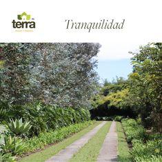 #Diseñodelpaisaje #Arquitecturadelpaisaje #Gardendesigner #Jardinería #Casayjardín #ndscapedesign Prado, Instagram, Landscape Design, Landscape Architecture, Landscaping