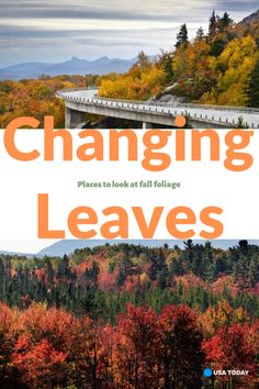 Fall foliage guide: Where and when to see changing leaves across the United States