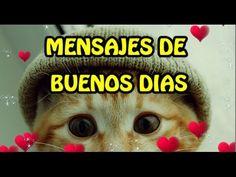 IMAGENES DE AMOR | MENSAJES DE BUENOS DIAS | Video Postales de Amor