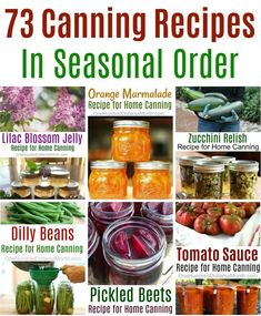 73 Canning Recipes In Seasonal Order Beet Recipes, Jelly Recipes, Orange Recipes, Jam Recipes, Cooking Recipes, Kid Cooking, Skillet Recipes, Cooking Tools, Home Canning Recipes