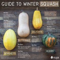 Winter Squash Guide