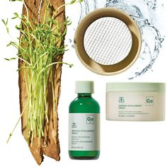 Targeted Skincare Products | Arbonne Intelligence Supercharge your skincare with high-performance, innovative products with proven results. Shop Now at Arbonne.com.