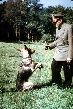 Adolf Hitler Early Life   Adolf Hitler plays with Blondi