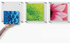Trio Set of 3 Square Floating Wall Frames 14x14 - contemporary - Frames - Wexel Art $131.98